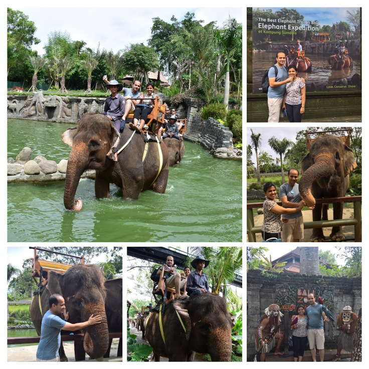 Bali elephant expedition